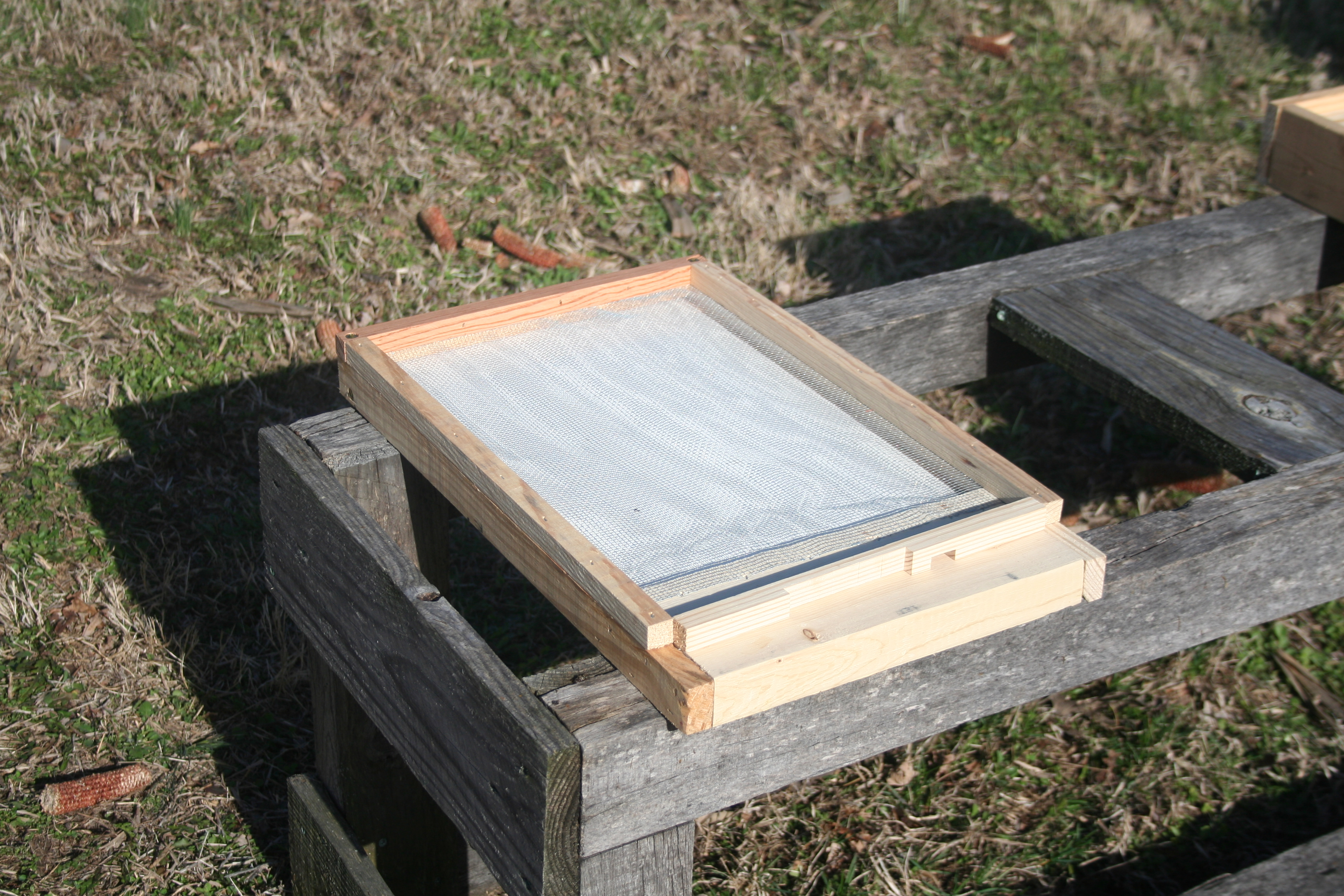 Board screened bees bottom